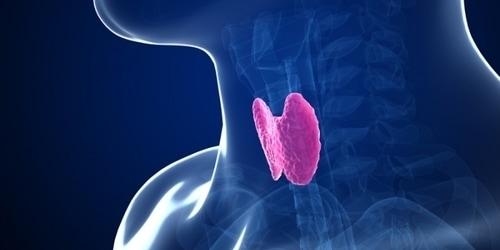 Spiritual Cause of thyroid disease